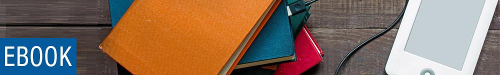 Ebook la grande libreria online libri dvd e for Libri acquisto online sconti